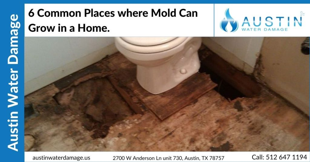 6 Common Places where Mold Can Grow in a Home.